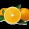 Caja Naranja de Zumo 15kg