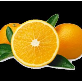 Oranges 15kg Navelina